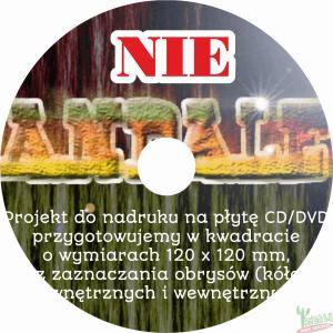 projekty płyt CD DVD